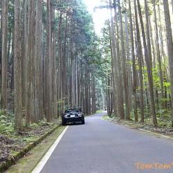 山深い場所で困らないために山岳路の安全な走り方、ポイントは対向車と動物