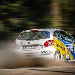 全日本ラリーでも活躍し出したグループR規格の競技車が気になる 例えばプジョー208R2