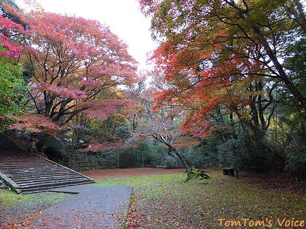 S660で行く出雲島根半島、鰐淵寺の紅葉は今が見ごろその4