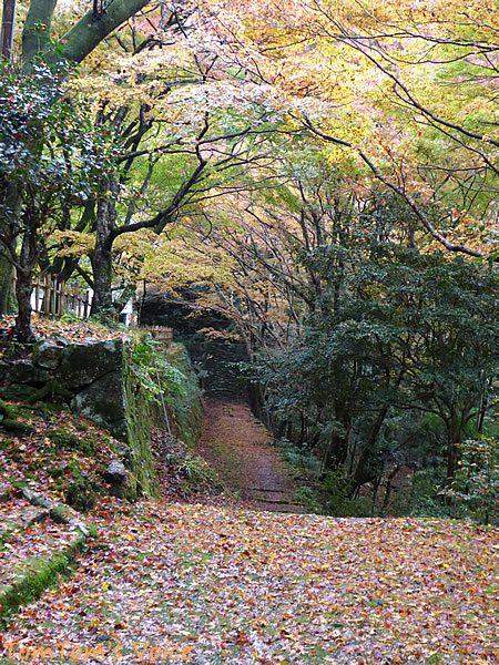 S660で行く出雲島根半島、鰐淵寺の紅葉は今が見ごろその5