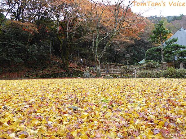 S660で行く出雲島根半島、鰐淵寺の紅葉は今が見ごろその1