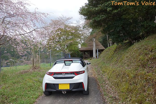 S660で行った遅い桜を探す京都美山町、美山町の大野ダム近くのかやぶきと桜