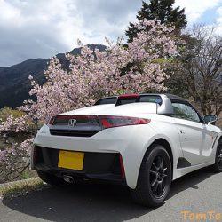 S660で行く遅めの桜を求めてプチ弾丸ツアー 京都美山町で最後の桜を満喫