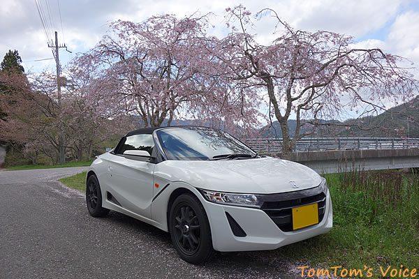 S660で行った遅い桜を探す京都美山町、復路の近所のいつもの撮影ポイント近く