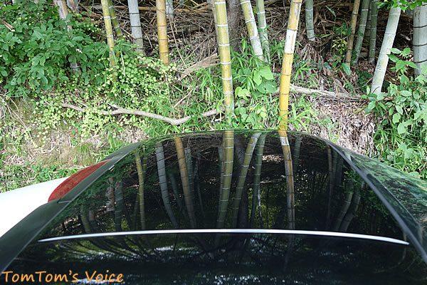 S660で行くプチ林道ツアー、逢坂峠での無限ハードトップ