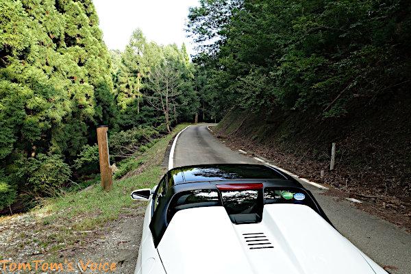 森林基幹道「妙見・蘇武線」の金山峠あたり、前回はここで雪に阻まれた