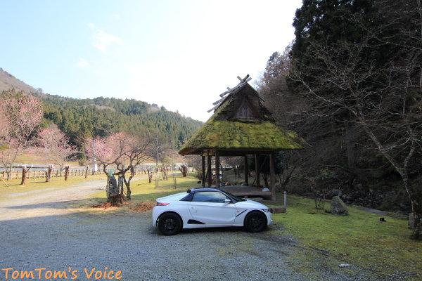 2020年3月山桜の咲く近所の神社